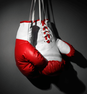 image of the best boxing sports betting in new zealand