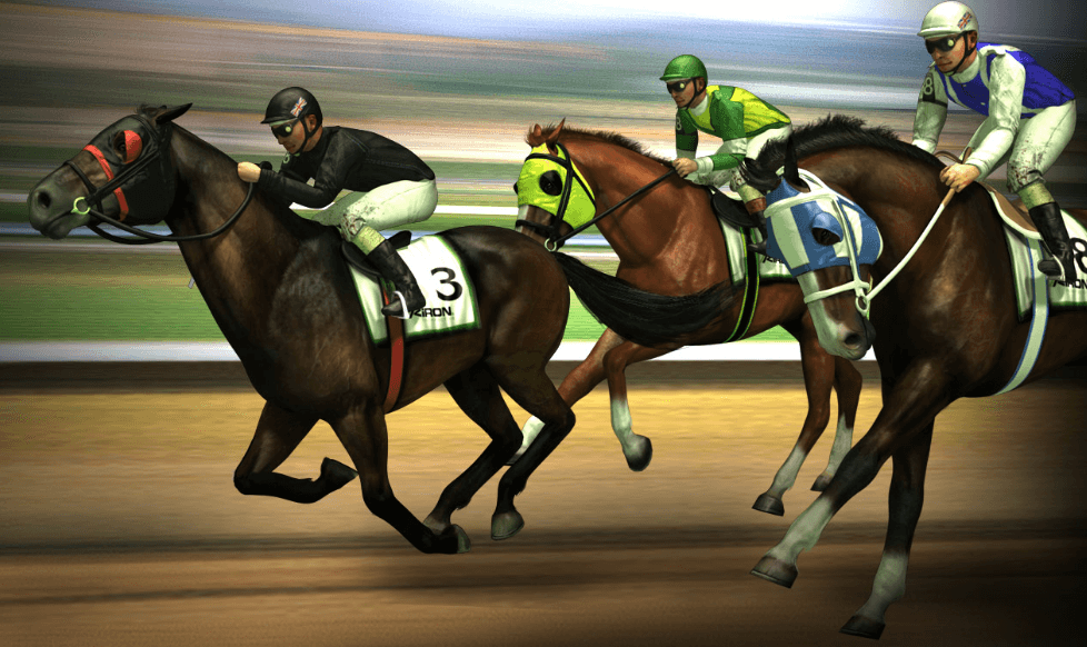 image of the best horse racing sports betting in new zealand
