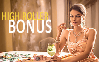 image of the best high roller casino bonuses in NZ