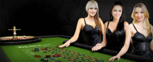 image of how new zealand live casinos work