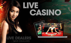 image of the best live casinos in new zealand